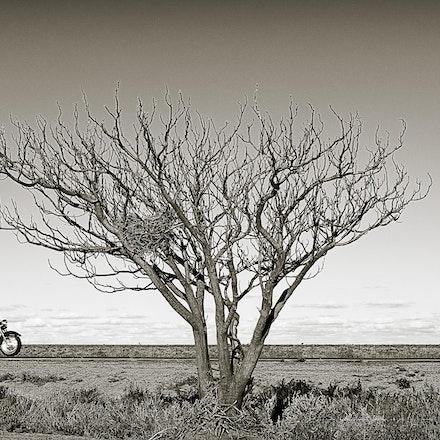 Passing through - The desolate Hay Plains of NSW Australia