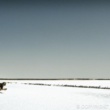 Salty Vista - Lake Hart - South Australia
