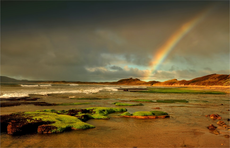 Rainbow-Ann-Bay-Tas0207-11x17