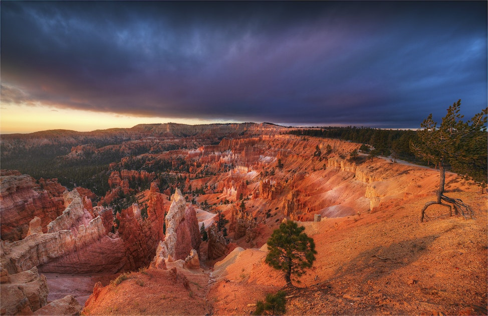 Bryce-Canyon-Dawn-U0248-18x25