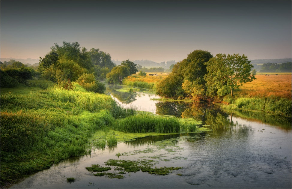 Stour-River-summer's-Morning-Dorset-E0630-11x17