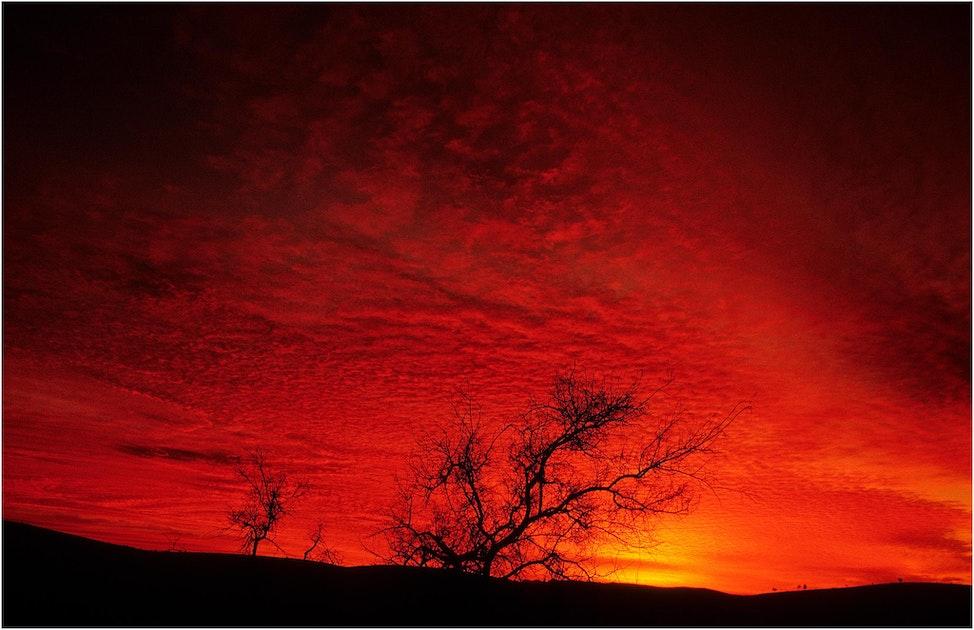 Flinders-Dawn-11x17-SA01901-11x17