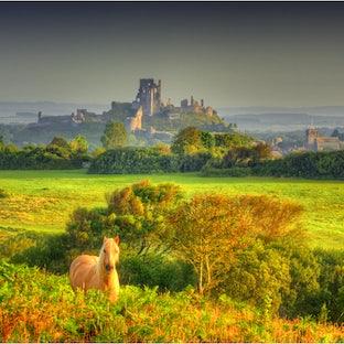 Dorset England