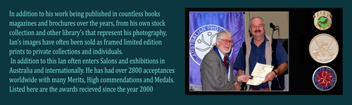 Ian Fellow award & description2