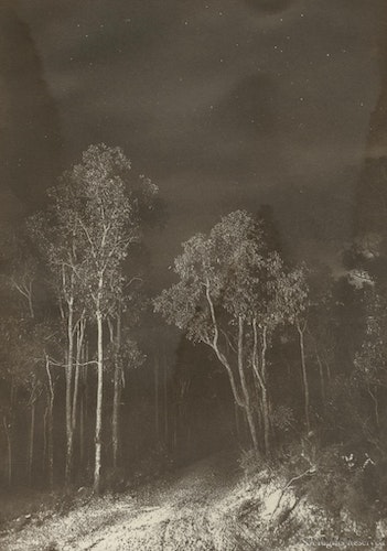 Road to Nowhere - Hand printed - Albumen print.