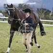 WHITTLESEA PONY CLUB - WINTER  WOOLIES
