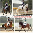 Broadford ARC, Barastoc Dressage Jackpot. Oct 26 2014