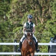 WH  ARC CT 18  DRESSAGE ALBUM 1
