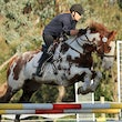 KANGAROO GROUND ARC SHOWJUMPING DAY 2014