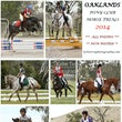 OAKLANDS PONY CLUB HORSE TRIALS   October 19 2014