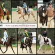 HURSTBRIDGE  PONY CLUB 2014
