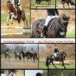 STANDARDBRED WINTER WOOLIES JULY 27 2014