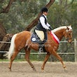 KANGAROO GROUND ADULT RIDERS SHOW August 2014