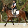 KANGAROO GROUND ARC DRESSAGE October 1 st 2014