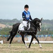 LILYDALE PONY CLUB HORSE TRIALS MARCH 23   2014