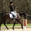 Apploosa Dressage Day Sept 2013
