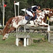 WANDIN ARC HORSE TRIALS APRIL  2014