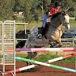 COLAC SHOW JUMPING