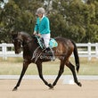 RIDDLES CREEK PONY CLUB  Dressage 23 Nov