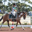 WESTCOAST ARC DRESSAGE FEB 2015