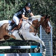 HURSTBRIDGE ARC SHOWJUMPING DAY 2015