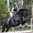 DONVALE SHOWJUMPING - A big Thank you to Michelle Renee for teaming up with me for this event.