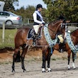 BIDDLESDON PARK EQUESTRIAN CLUB HRCAV Double Points Show