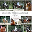 HURSTBRIDGE ARC DRESSAGE DAY
