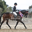 RIDDLES CREEK PRE-ROYAL OPEN SHOW