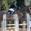 HURSTBRIDGE  ARC SHOWJUMPING