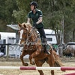SHOWJUMPING LEVE 3