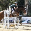 SHOWJUMPING LEVEL 5