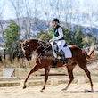 GLENVALE DRESSAGE DAY March 29 2015