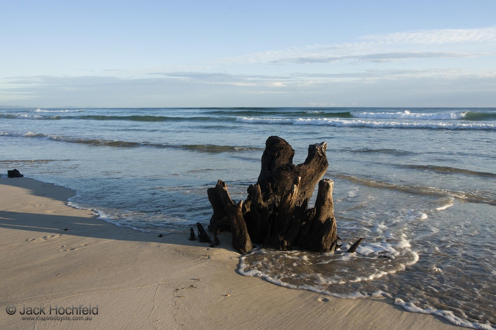 Tree stump in the incoming tide, Belongil beach - Tree stump in the incoming tide, Belongil beach, Byron Bay