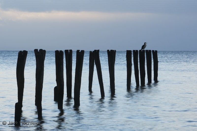 Old pier, Reeves Point, Kangaroo Island - Old pier, Reeves Point, Kangaroo Island at dawn