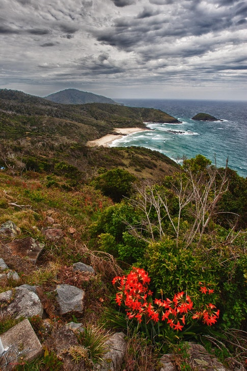View from Smokey Cape - This is the view North from Smokey Cape Lighthouse.  This gorgeous landscape with dramatic skies is typical of the Mid to North...