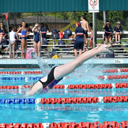 Secondary-Swimming-Carnival-2016-06