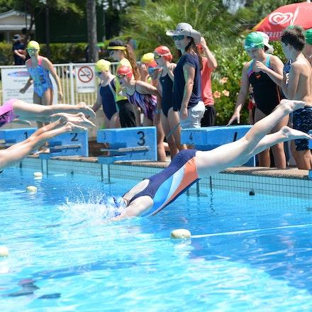 Primary-Swimming-Carnival-2016-534