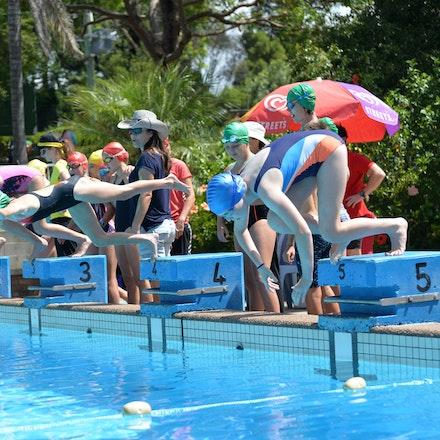 Primary-Swimming-Carnival-2016-532