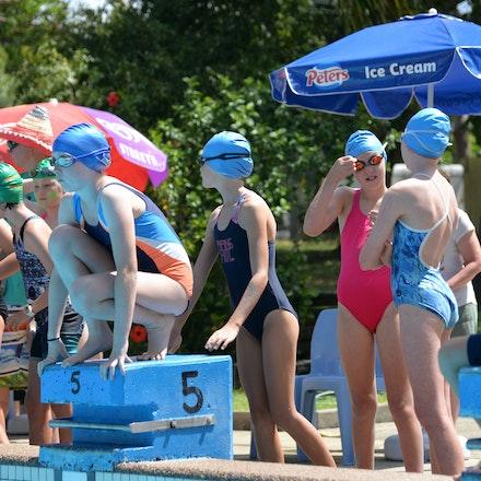 Primary-Swimming-Carnival-2016-530