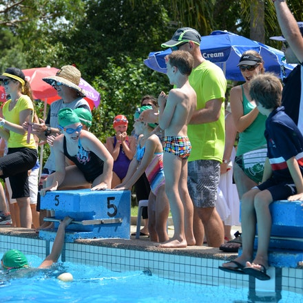 Primary-Swimming-Carnival-2016-526