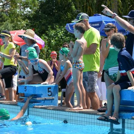 Primary-Swimming-Carnival-2016-525
