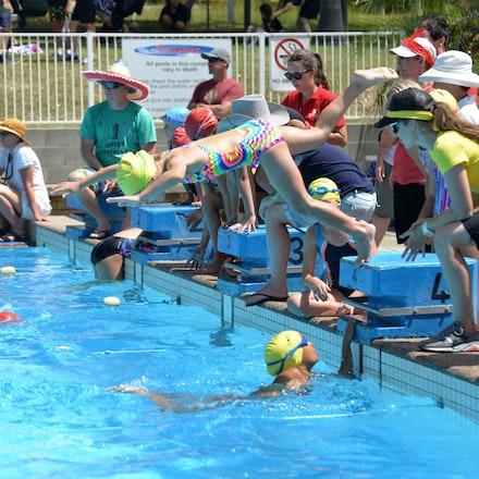 Primary-Swimming-Carnival-2016-522