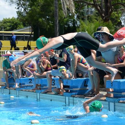 Primary-Swimming-Carnival-2016-521