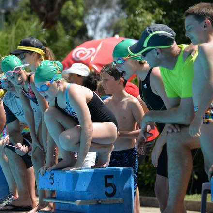 Primary-Swimming-Carnival-2016-518