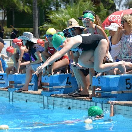Primary-Swimming-Carnival-2016-519