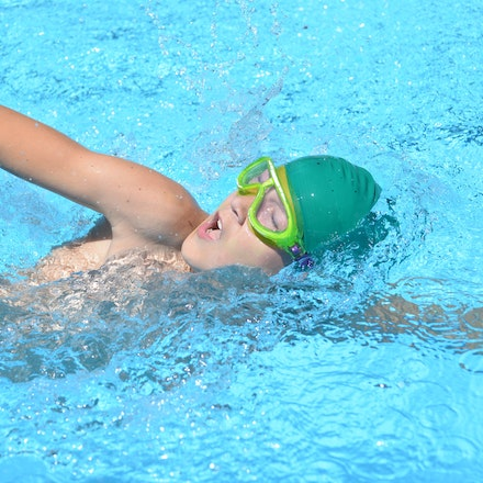 Primary Swimming Carnival 2016