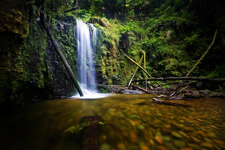 Marriners Falls - Otway National Park, 2011.