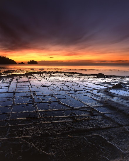 Tessellated Pavement - Eaglehawk Neck, TAS. 2012.
