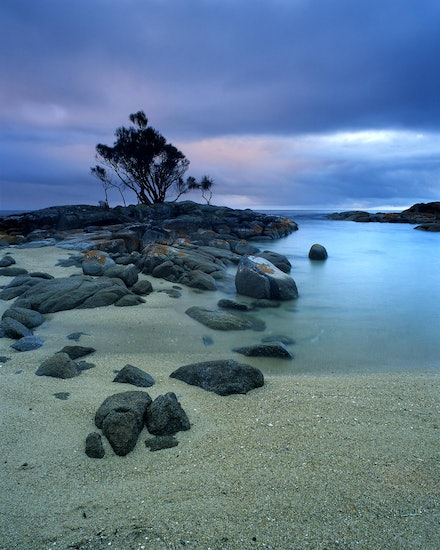 Presence - Binalong Bay, TAS. 2012.